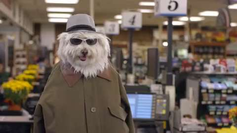 Ad Meter 2016: 'Doritos Dogs'