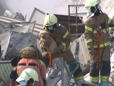 A dog was pulled from the rubble of a building in Tainan after a powerful, shallow earthquake struck southern Taiwan before dawn on Saturday. (Feb. 6)