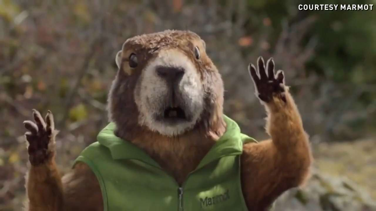 Bears, sheep, a marmot & even a beer tap talk in Super Bowl ads