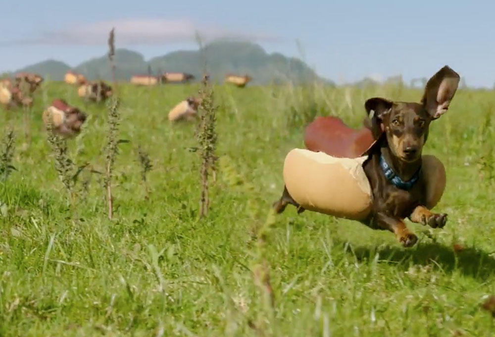 We asked and you shared! Here are some of our favorites images from 'Your Take' of your dogs to honor one of the favorite Super Bowl commercials, the Heinz 'Wiener Stampede.'
