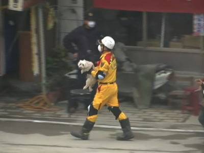 A dog was rescued from the rubble of the earthquake in Taiwan on Wednesday. The rescue came four days after the 6.4 magnitude quake hit the city of Tainan, killing at least 44 people. (Feb. 10)