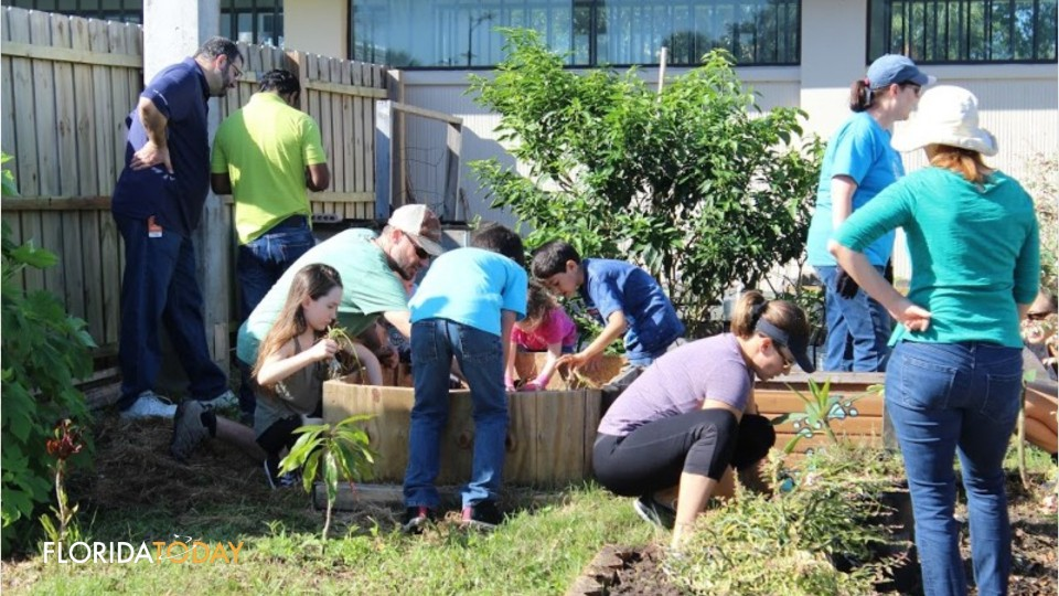 the significant benefit of community gardening Benefits of being involved in a grow community gardens produces nutritious food – food costs have risen significantly in recent years creates opportunity for recreation, exercise, therapy, and health – the health and wellbeing benefits of community gardening are well documented for eg studies (like the one.