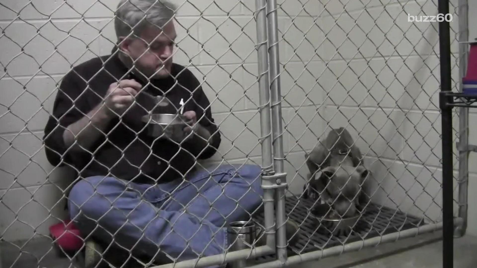 Caring veterinarian eats meals with neglected pit bull inside her cage