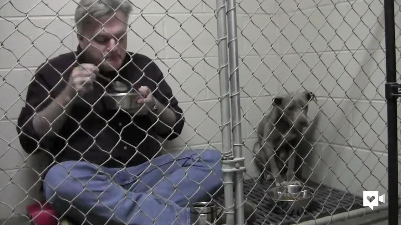 Kind doc eats breakfast in cage with scared rescue dog