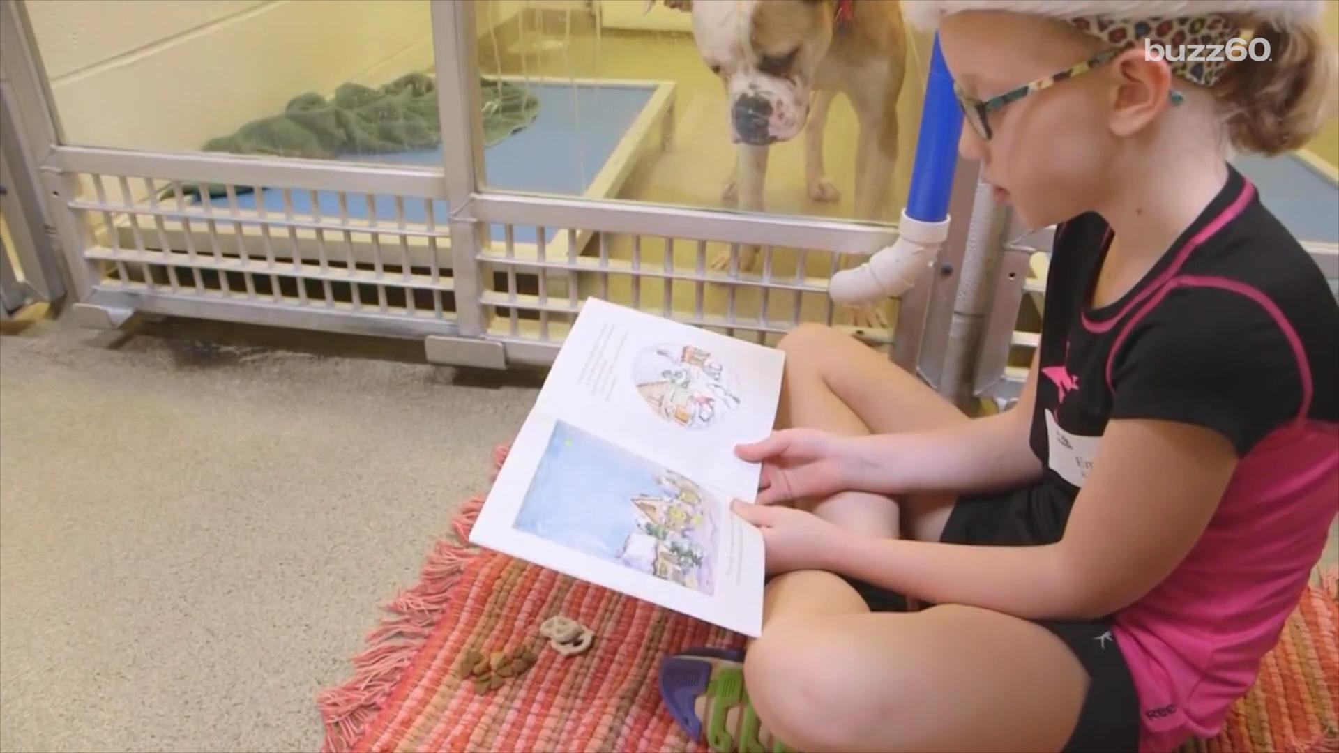 Kids reading books to shelter dogs is helping them get adopted