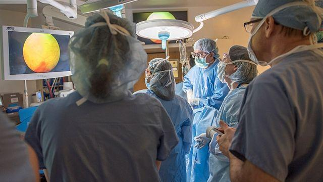 The first uterus transplant in the US was a brief success