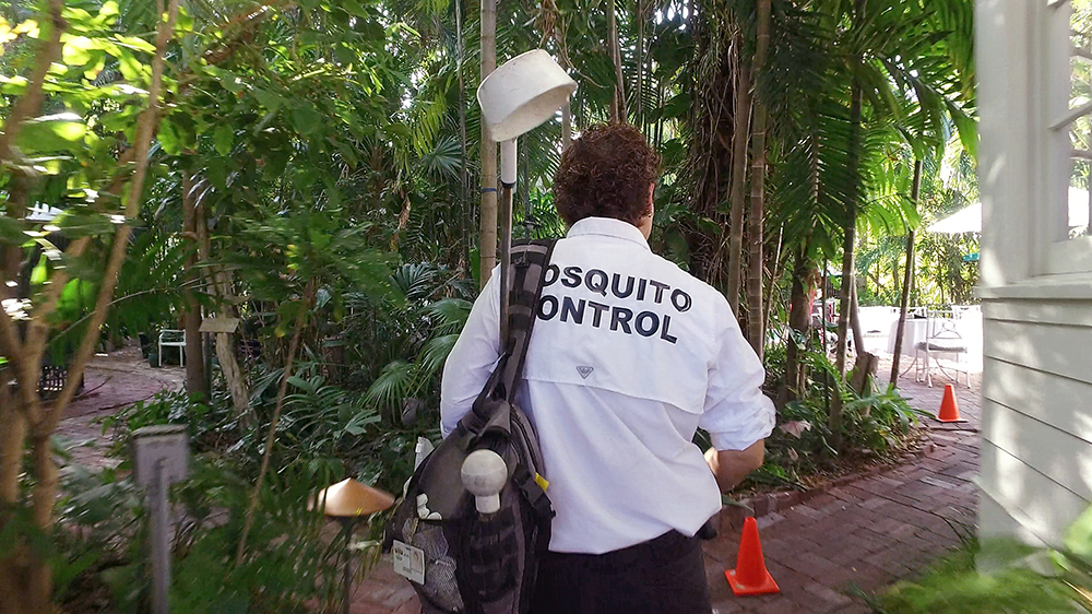 The fight against the Zika Virus starts with mosquito control