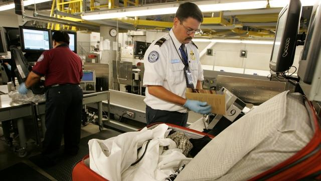 The TSA found A record 73 guns in carry-ons in a week