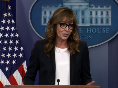 Allison Janney crashes White House press briefing