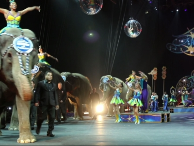 Curtain falls for Ringling Bros. elephants in final circus show