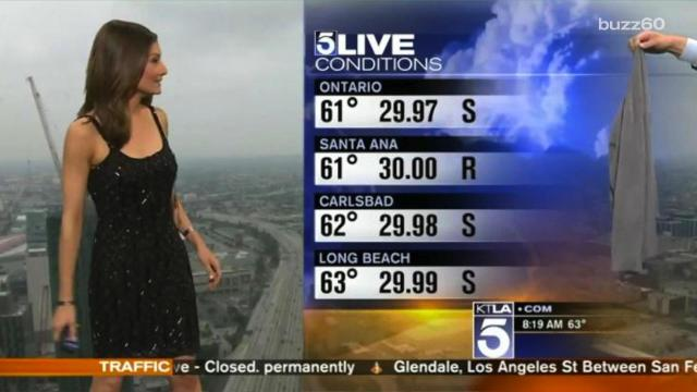 Meteorologist told to cover up on live TV