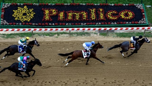 Two horses died after running in races before Saturday's Preakness Stakes. One collapsed after a race, and another was euthanized for a broken leg. Video provided by Newsy