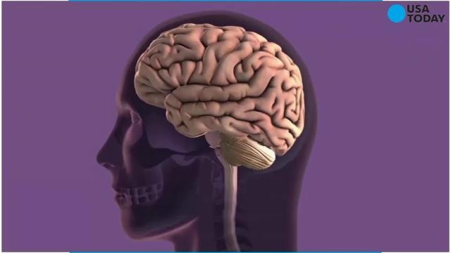 Has science discovered the root of Alzheimer's ?