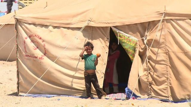 Starving Iraqis risk all to flee Islamic State rule in Fallujah