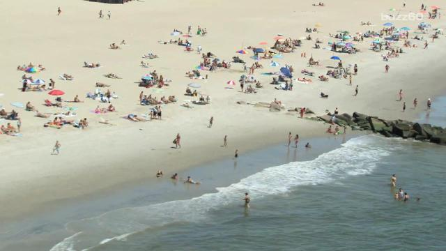 6568419d3eb Authorities warn as sea lice invade beaches in Pensacola