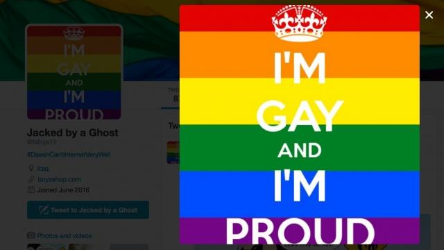 unofficial website of gay