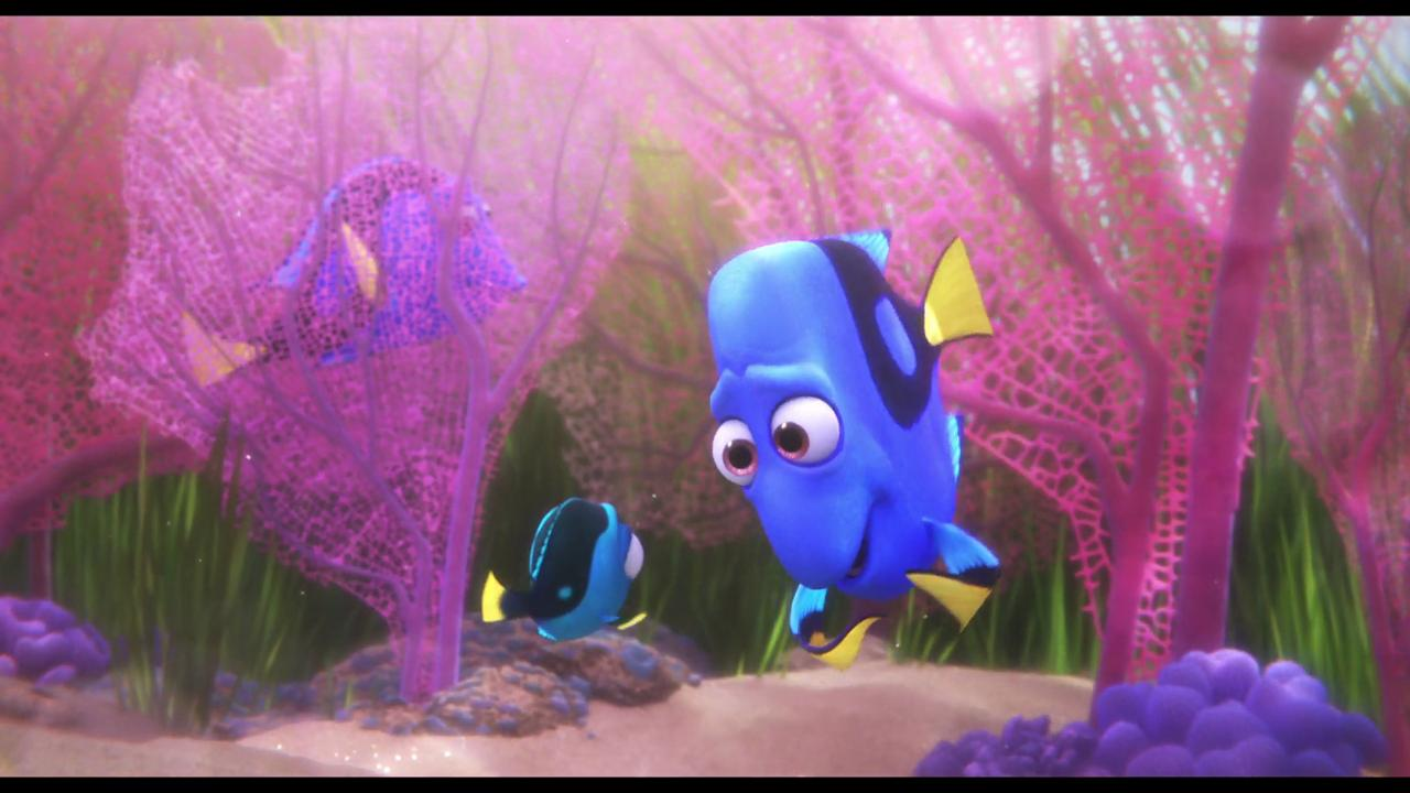 Watch Baby Dory Steps Out From Finding Dory