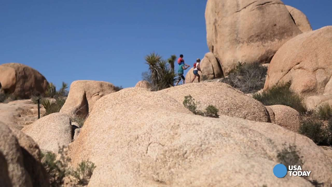 Joshua Tree's incredible rock formations make the park a giant playground for kids of all ages. Video shot by Marilyn Chung, The Desert Sun.