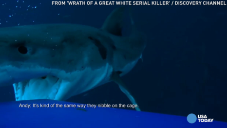 USA TODAY's Robert Bianco previews the Shark Week special 'Wrath of a Great White Serial Killer' on Discovery Channel, for Tuesday, June 28.