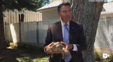 Nevada's governor welcomes a surprising new pet