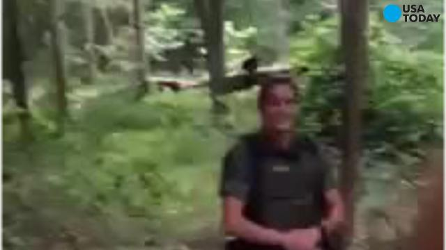 Black bear photobombs Md. Natural Resources officers