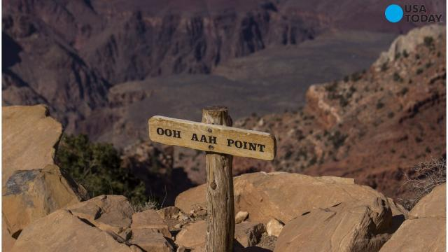 Woman trips and falls to her death at Grand Canyon