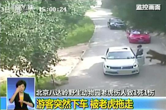 China's state broadcaster released shocking footage of the moment when a woman was mauled by a tiger and another dragged to death during a family row at a wildlife park in Beijing