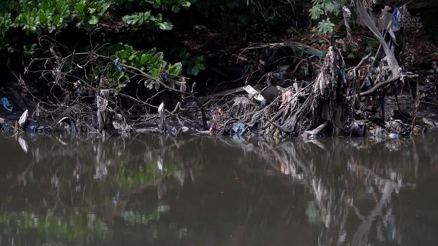 A resident of Rio's Marina da Glória at Guanabara Bay, where Olympic sailing and rowing will take place, describes the state of the water quality.