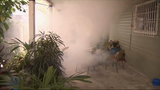 Raw: Mosquito Spraying in Miami's Wynwood Area