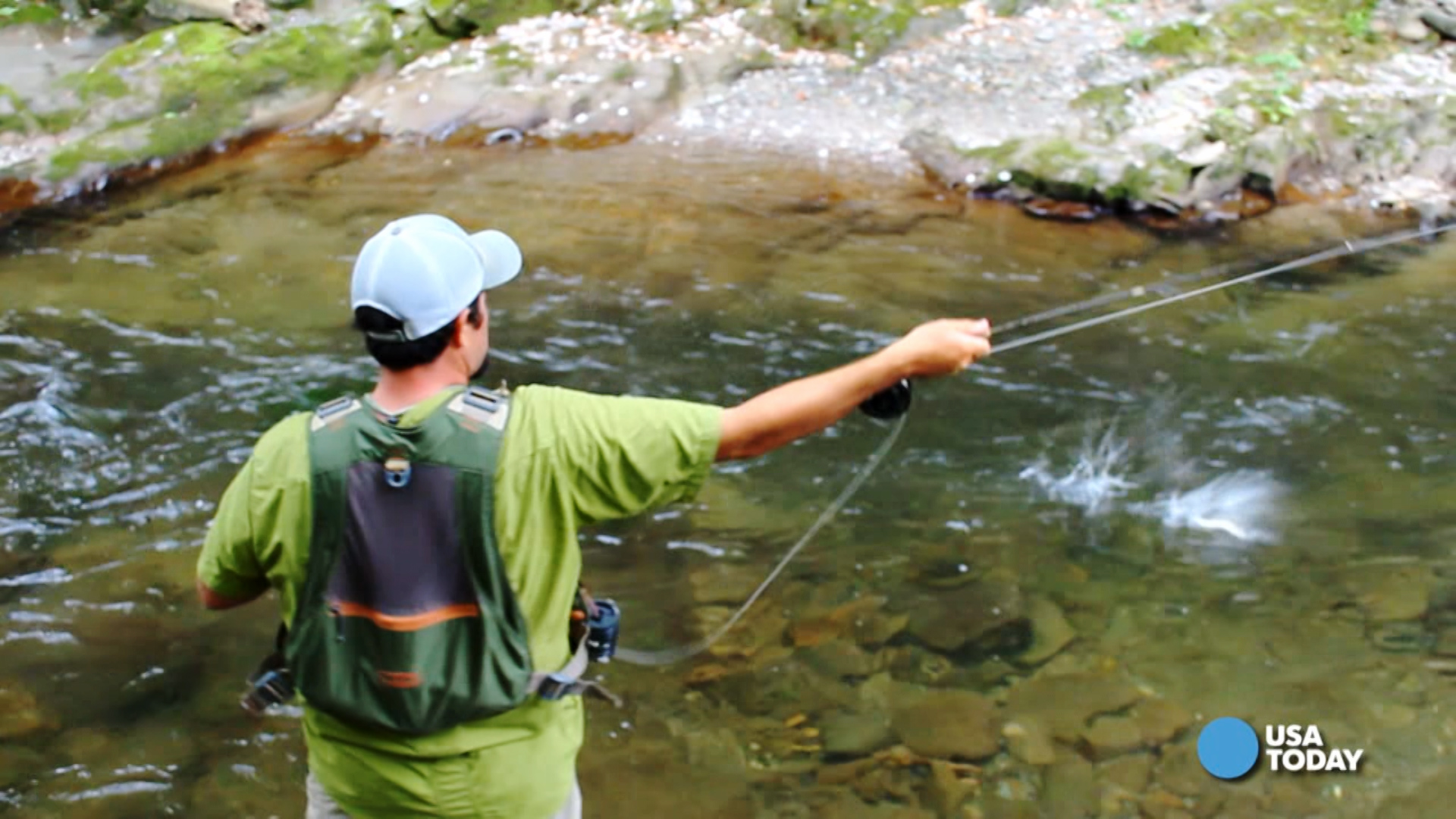 Trees stretch as far as you can see in 360 degrees in smokies for Smoky mountain fly fishing