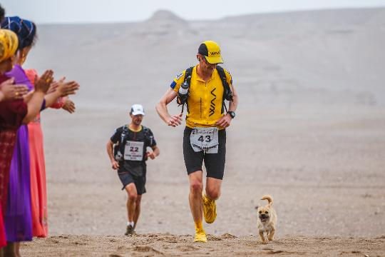Stray dog falls in love with runner during marathon