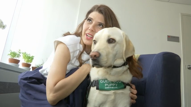 Marisa Tomei wants to empower the visually impaired