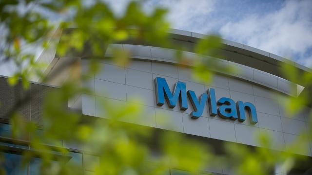 Mylan Pharmaceuticals' CEO had a modest base salary in 2015, but her total compensation was in the multimillions. Video provided by Newsy