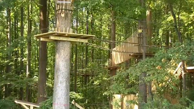 A 59-year-old Delaware woman is dead after plummeting about 35 feet from a zip line platform on Wednesday, according to reports