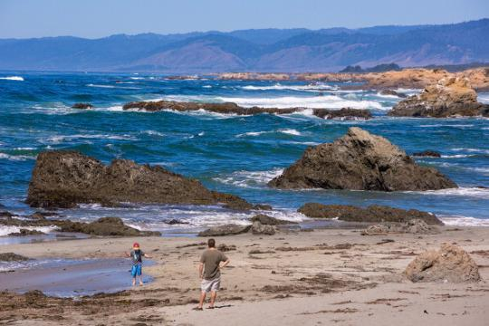 6 beaches to visit for prime beachcombing