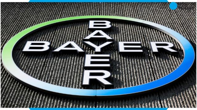 By accepting Bayer's offer, the largest cash acquisition proposal on record, Monsanto is set to give the German company a shot at grabbing the top spot in the fast-consolidating farm supplies industry, combining its crop science business with Monsanto's strength in seeds.