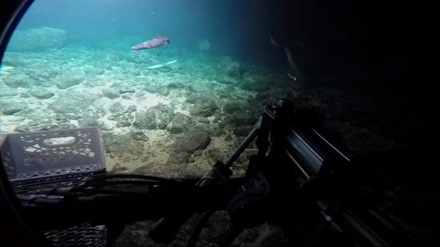 Into The Abyss Exploring Underwater Volcanoes