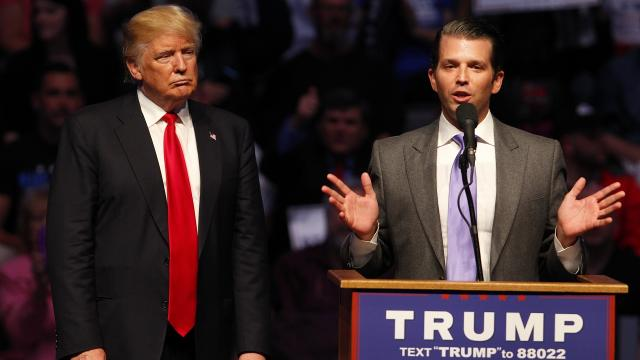 """Donald Trump Jr. tweeted, """"If I had a bowl of Skittles and told you just three would kill you. Would you take a handful?"""" Video provided by Newsy"""
