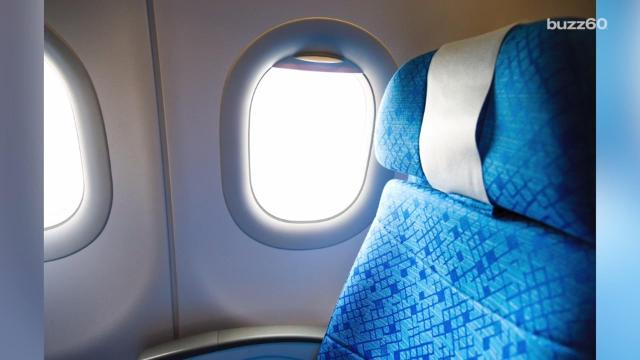 Airline creates 'Child Free Zones' on flights