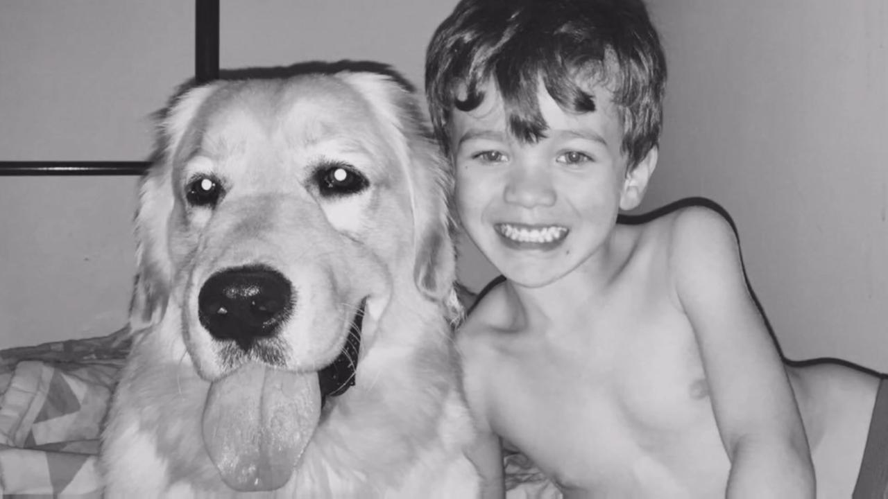 This moment when boy meets service dog will make you cry