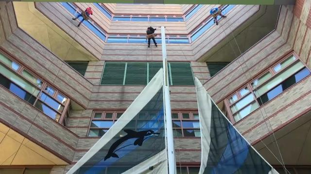 A trio of window-washers donned superhero outfits and scaled the walls of Hasbro Children's Hospital in Providence, RI to the delight of young patients and their families. (Oct. 26)