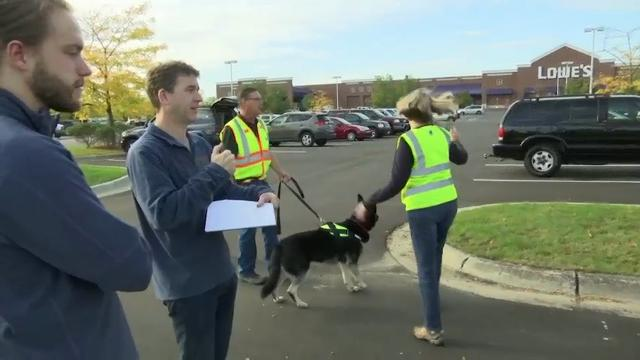 Specially Trained Dogs Sniff out Fecal Pollution