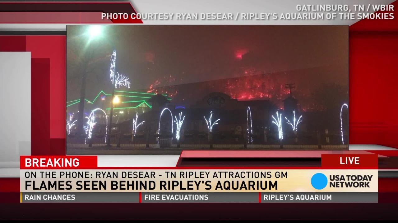 Fire forces Ripley's Aquarium staff to leave animals behind