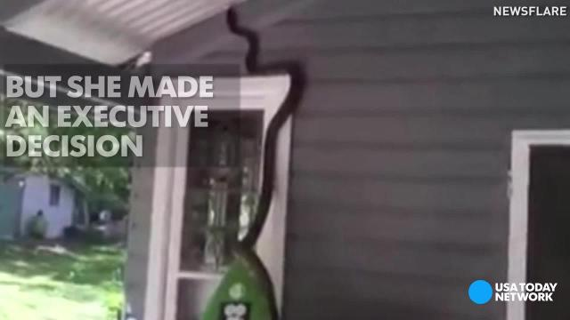 Surprise! There's a python on your porch
