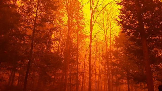 At least three dead in Tennessee wildfires