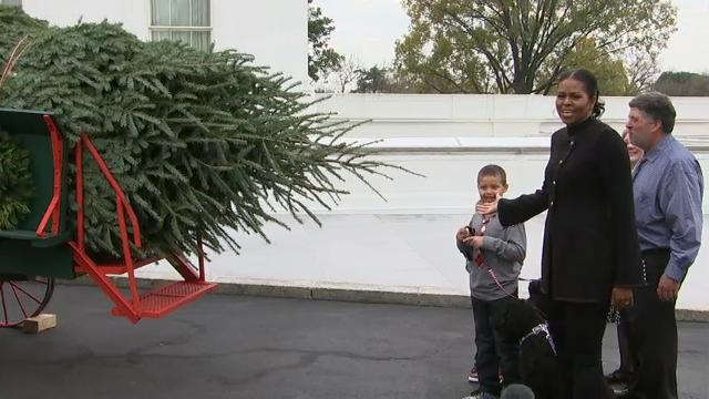 First lady accepts White House Christmas Tree