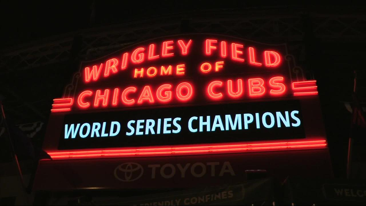 Image result for cubs celebrate world series