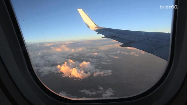 Here's why plane windows are shaped as they are