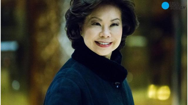 Trump taps Elaine Chao for Transportation Secretary position