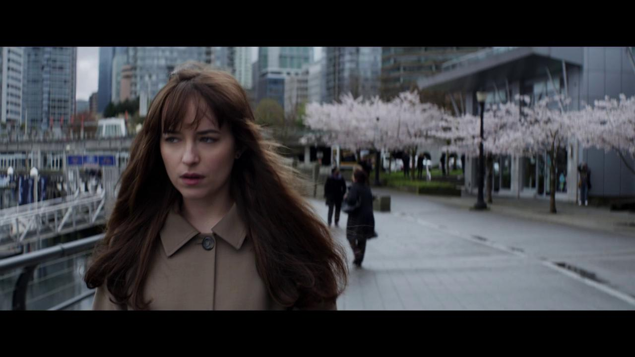 who is the girl in fifty shades of grey